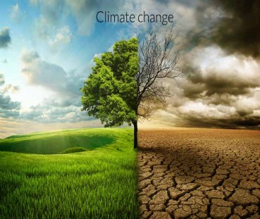 Environment and Climate Change Adaptation